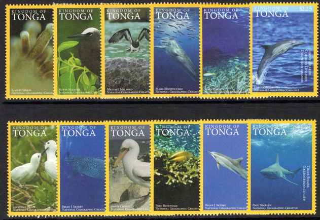 Tonga 2016 Sea Life unmounted mint.
