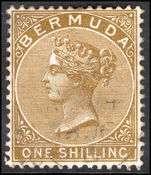 Bermuda 1883-1904 1s olive-brown CA fine used.