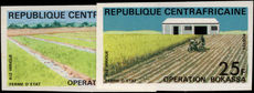 Central African Republic 1972 Bokassa Plan imperf unmounted mint.