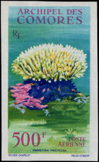 Comoro Islands 1962 500f Stoney Coral imperf unmounted mint.