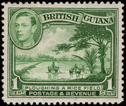 British Guiana 1938-52 1c yellow-green lightly mounted mint.