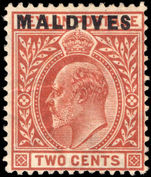 Maldive Islands 1906 2c red-brown lightly mounted mint.
