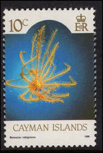 Cayman Islands 1990 10c Yellow Crinoid unmounted mint.