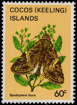 Cocos (Keeling) Islands 1983 60c Butterfly unmounted mint.