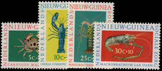 Netherlands New Guinea 1962 Social Welfare, Shellfish unmounted mint.
