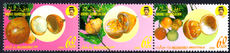 Brunei 1990 Local Fruit (4th series) (folded) unmounted mint.