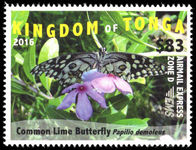 Tonga 2016 $83 Airmail Express Butterfly unmounted mint.