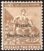 Bechuanaland 1885-87 2d pale bistre (small adherance on reverse mounted mint.
