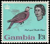 Gambia 1963 1sh3d Red-eye Dove fine mint lightly hinged.